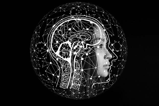硬碟比擬人類大腦